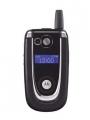Motorola V600i