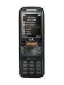 Sony Ericsson W830c